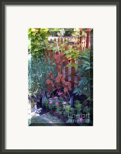 Rusty Rose Framed Print By Jp Giarde