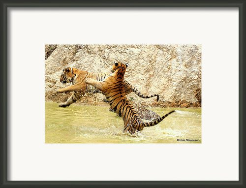 Set Flying Tigers Framed Print By Richard Bentley-stevenson