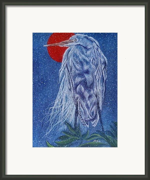Snow Bird Framed Print By Shahid Muqaddim