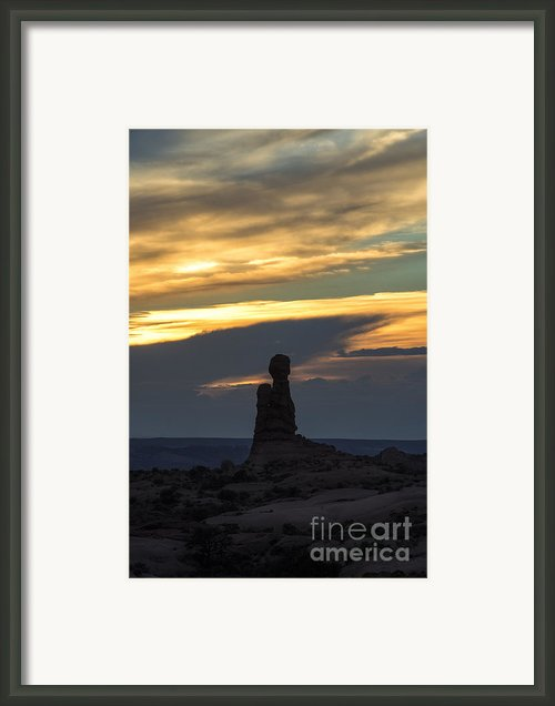 Standing Tall Framed Print By Sandra Bronstein