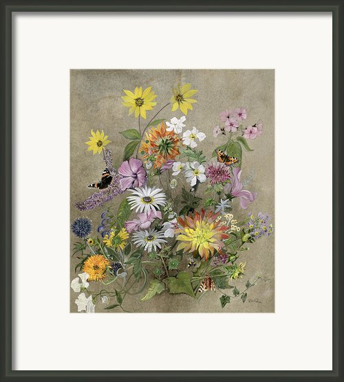 Summer Flowers Framed Print By John Gubbins