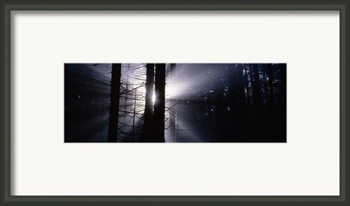 Sun Breaking Through Mists Framed Print By Intensivelight