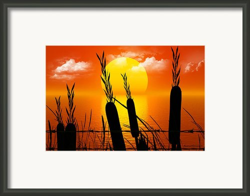 Sunset Lake Framed Print By Robert Orinski