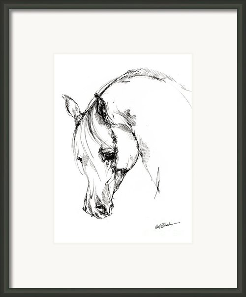 The Arabian Horse Sketch Framed Print By Angel  Tarantella
