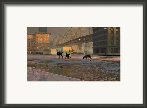 The Fellowship Of Dogs Framed Print By Dieter Carlton