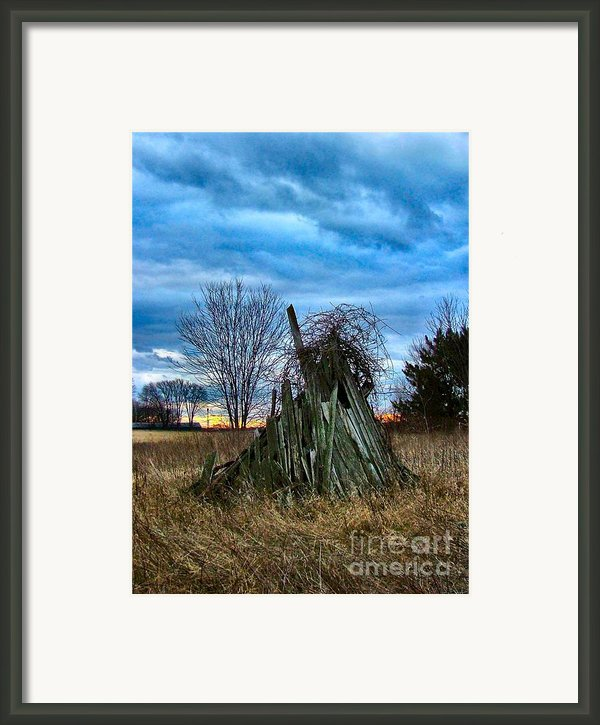 The Woodstack Framed Print By Julie Dant