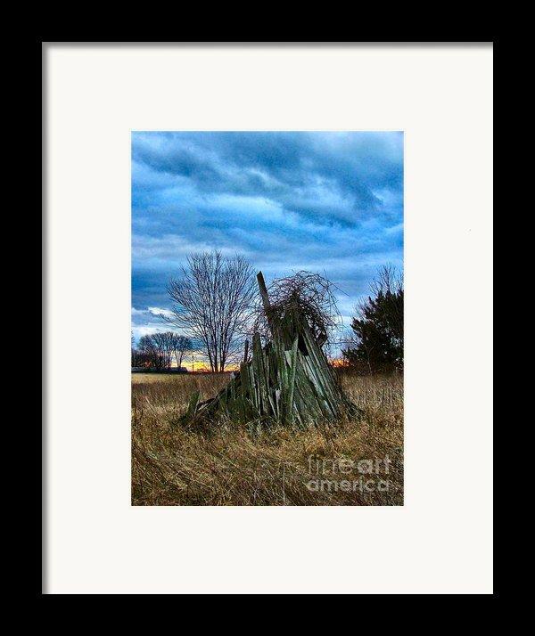 The Woodstack Framed Print By Julie Dant