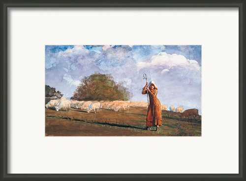 The Young Shepherdess Framed Print By Winslow Homer