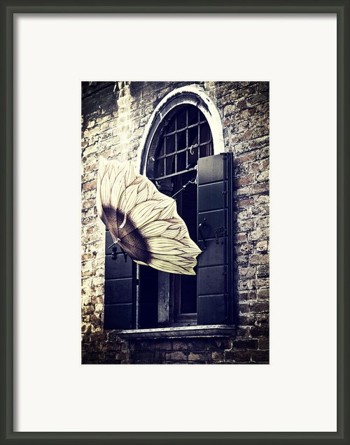 Umbrella Framed Print By Joana Kruse