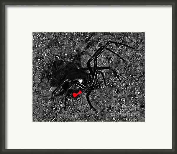 Wicked Widow - Selective Color Framed Print By Al Powell Photography Usa
