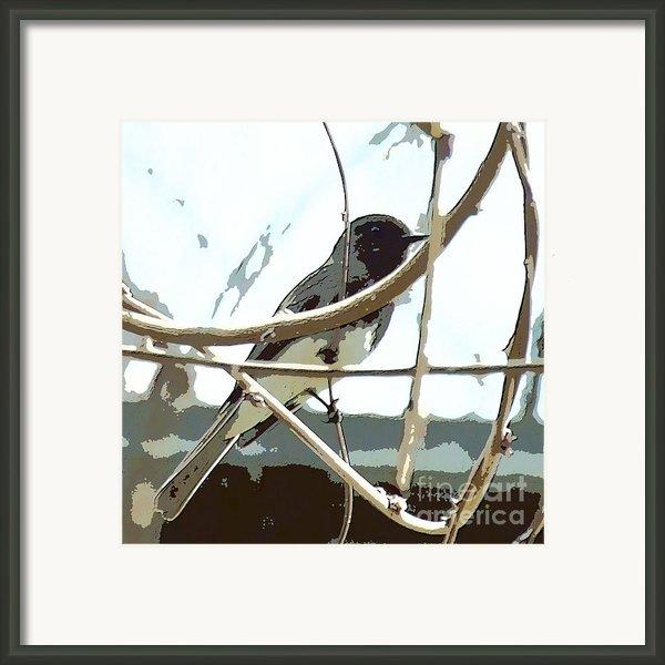 Winter Bird Framed Print By Artist And Photographer Laura Wrede