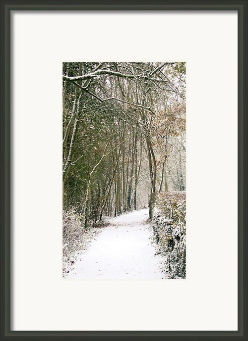 Winter Journey Framed Print By Andy Smy