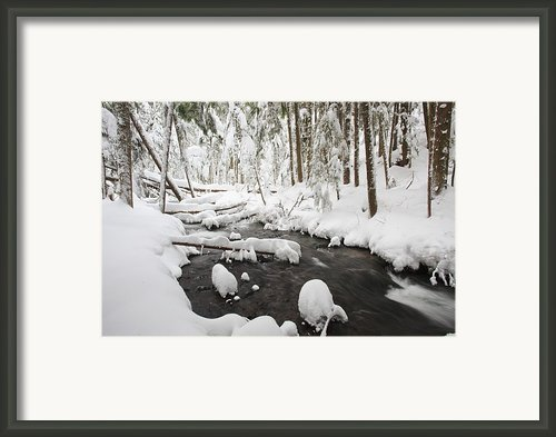Winter Snow Along Still Creek In Mt Framed Print By Craig Tuttle