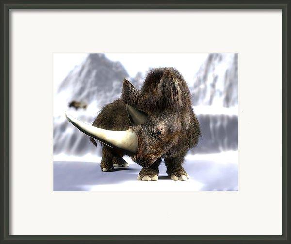 Woolly Rhinoceros Framed Print By Christian Darkin
