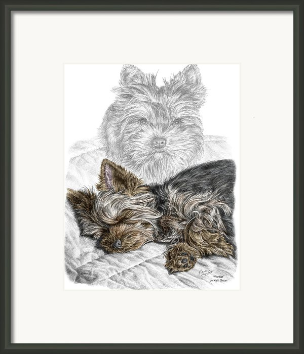 Yorkie - Yorkshire Terrier Dog Print Framed Print By Kelli Swan