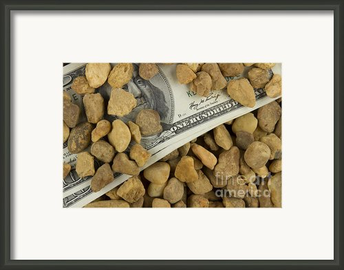 Money Framed Print By Blink Images