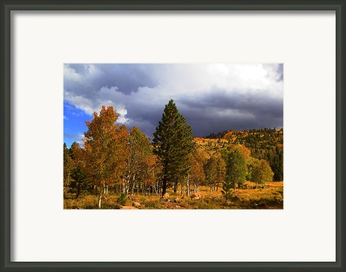 Rocky Mountain Fall Framed Print By Mark Smith