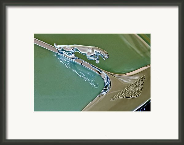 1966 Jaguar Hood Ornament Framed Print By Jill Reger
