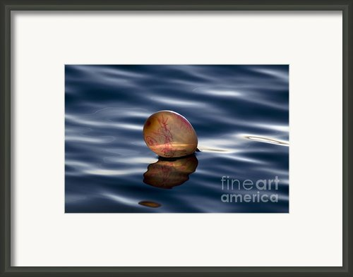Balloon Framed Print By Odon Czintos