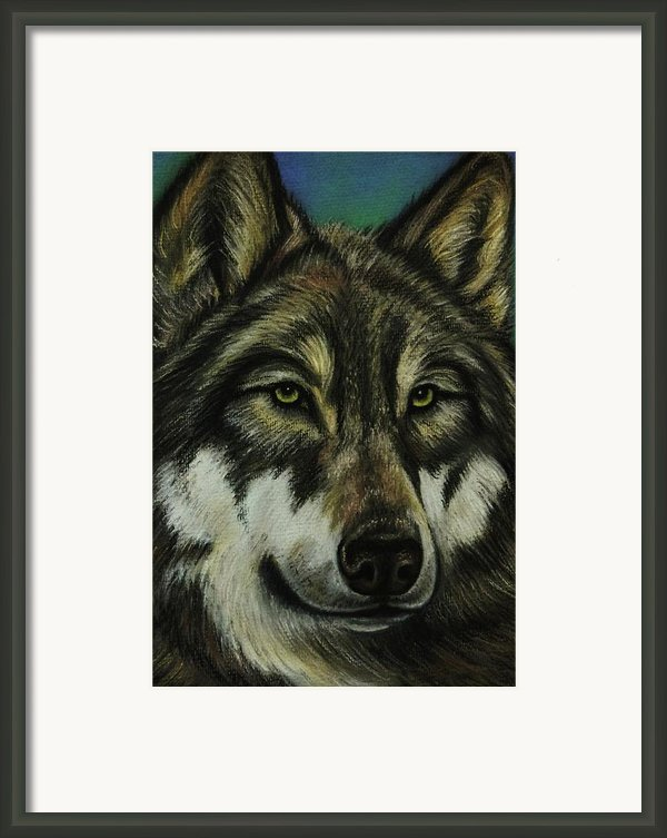 Blue Wolf Framed Print By Lucy Deane