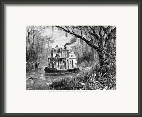 Florida: St. Johns River Framed Print By Granger