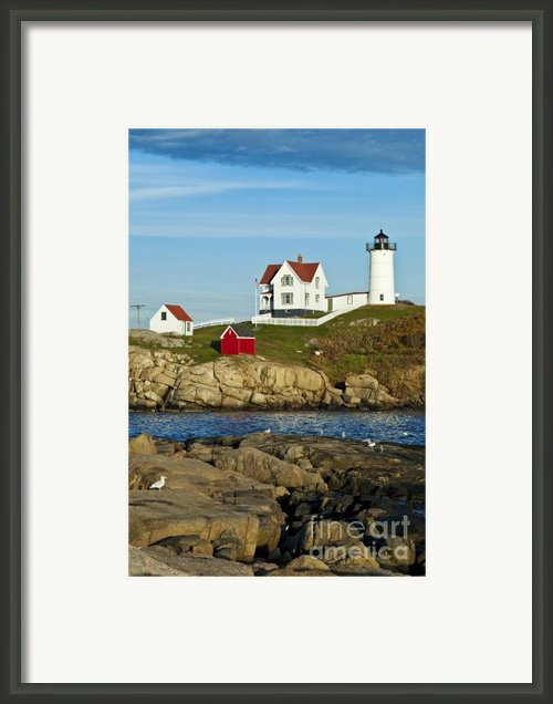 Nubble Light Framed Print By John Greim