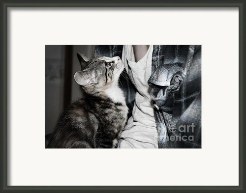 Photography Framed Print By Jayde Rowley