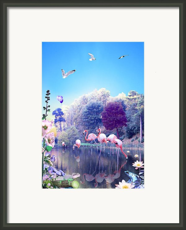 Pink Flamingoes Framed Print By Emily Campbell