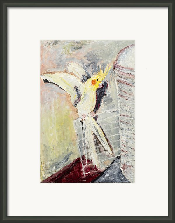 Spicy Framed Print By Iris Gill