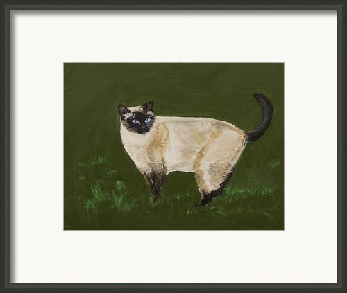Sweetest Siamese Framed Print By Leslie Allen
