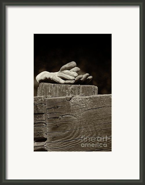 Taking A Break Framed Print By Sandra Bronstein