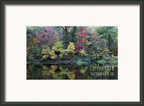 Sugar Ridge State Fish And Wildlife Area Framed Print By Jack R Brock