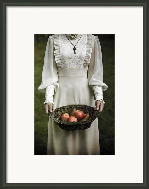 Basket With Fruits Framed Print By Joana Kruse