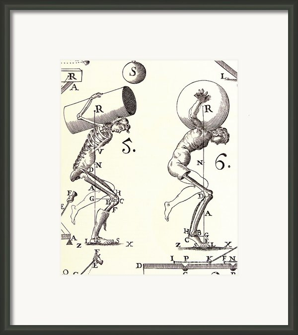 Biomechanics Framed Print By Science Source