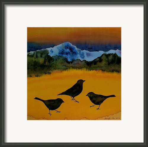 3 Blackbirds Framed Print By Carolyn Doe