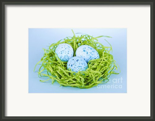 Blue Easter Eggs  Framed Print By Elena Elisseeva