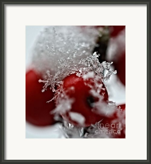 Ice Crystals Framed Print By Kristin Kreet