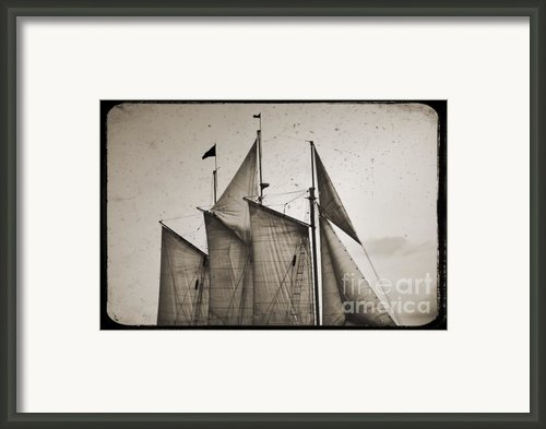 Schooner Pride Tall Ship Charleston Sc Framed Print By Dustin K Ryan
