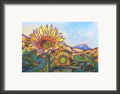 3 Sunflowers Framed Print By Nadi Spencer