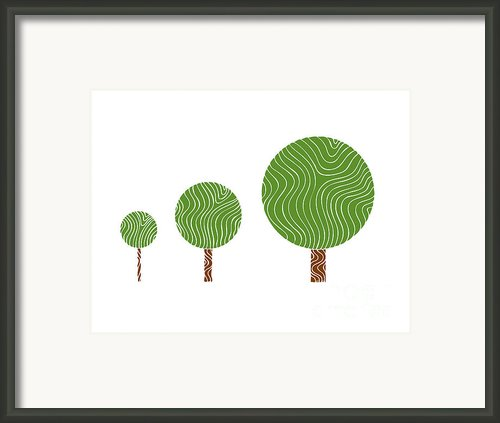 3 Trees Framed Print By Frank Tschakert