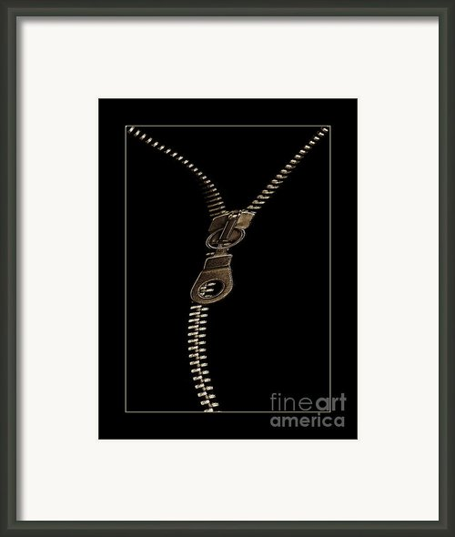 Zip Framed Print By Odon Czintos