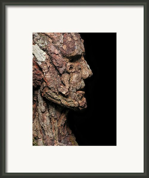 Revered  A Natural Portrait Bust Sculpture By Adam Long Framed Print By Adam Long