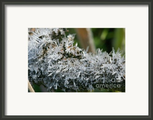 Ice Crystals Framed Print By Crystal Garner