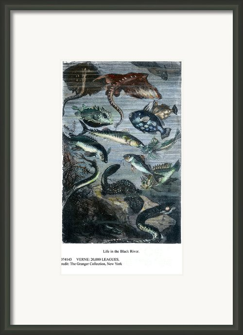 Verne: 20,000 Leagues Framed Print By Granger