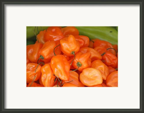 9805 Framed Print By Jim Simms