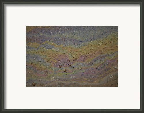 A Close-up Of A Parking Lot Oil Slick Framed Print By Joel Sartore