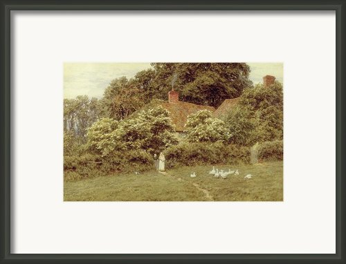 A Cottage At Farringford Isle Of Wight Framed Print By Helen Allingham