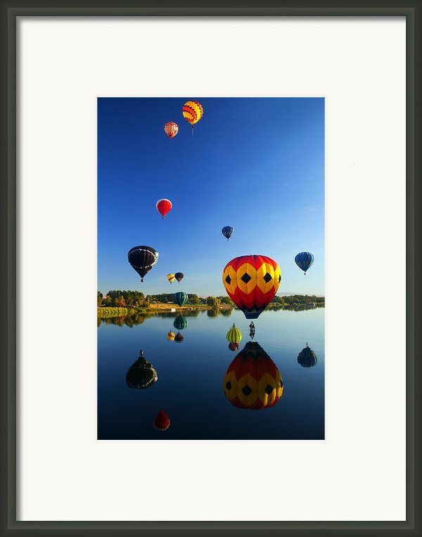 A Dozen  Reflected Framed Print By Mike  Dawson