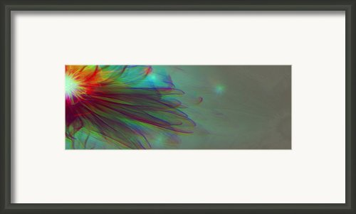 A Flower For You Framed Print By Li   Van Saathoff