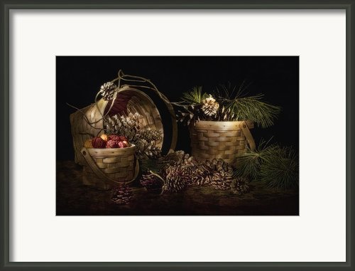 A Gathering Of Pine Framed Print By Tom Mc Nemar